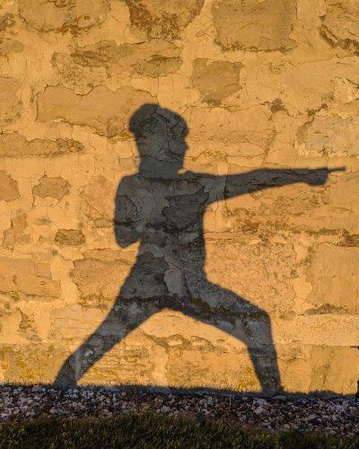 shadow yoga warrior 2